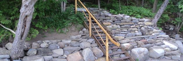 Cedar Log Work